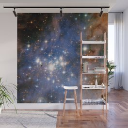 Star cluster Trumpler 14 in the Milky Way (NASA/ESA Hubble Space Telescope) Wall Mural