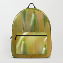 Swingers Backpack