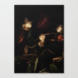 Mignon I Canvas Print