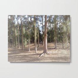Trees by lake Metal Print