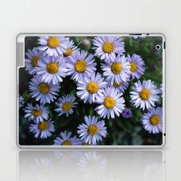 Plant Patterns - 𝘌𝘳𝘪𝘨𝘦𝘳𝘰𝘯 sp. Laptop & iPad Skin