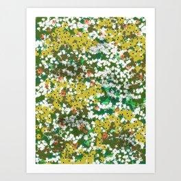 Monets Pond Art Print