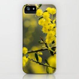 Wattle Sunlight iPhone Case