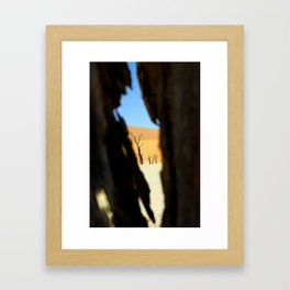 Dead Vlei Framed Art Print