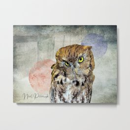 Cute Rustic Screech Owl Fence Modern Cottage Chic Country Art A653 Metal Print