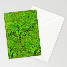 ABSTRACTED  GREEN  TROPICAL FERNS GARDEN ART Stationery Cards