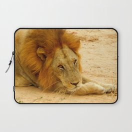 Lion's Eyes Laptop Sleeve