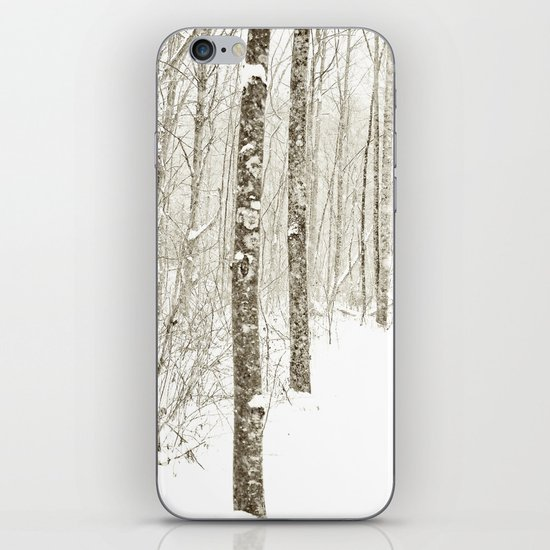Wintry Mix iPhone & iPod Skin