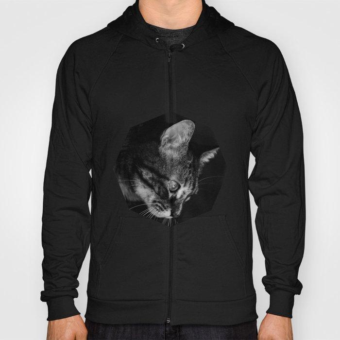 kitten in black and white Hoody