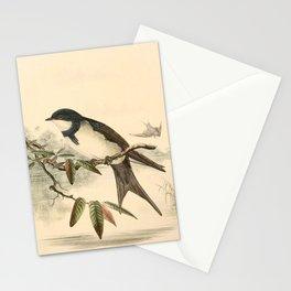 Atticora melanoleuca Stationery Cards