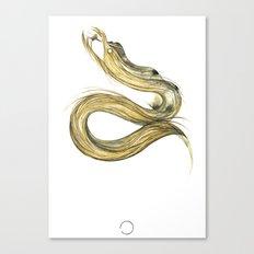 Fáfnir Canvas Print