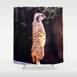 What's Up Meerkat? Shower Curtain