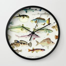 Illustrated Colorful Southern Pacific Ocean Exotic Game Fish Identification Chart No. 3 Wall Clock