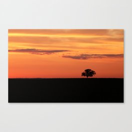 Lone Tree in Field Canvas Print