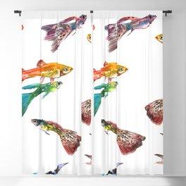 Tropical Colors, Guppy Aquarium Fish , Aquarium Art Underwater Blackout Curtain