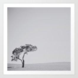 This little tree Art Print