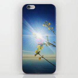Superior Spring iPhone Skin