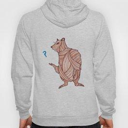The Runaway Bear Hoody