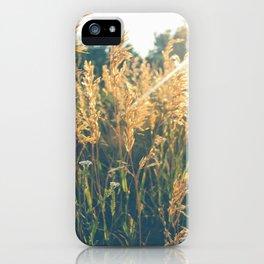 Golden Hour Hangout iPhone Case