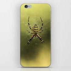 Tiger Spider iPhone & iPod Skin