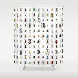 Beetlemania / Get your entomology on! Shower Curtain