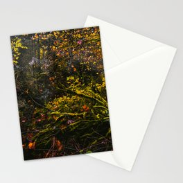 Oregon Forest III Stationery Cards