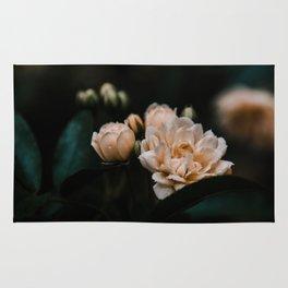 Soft Mini Roses Rug