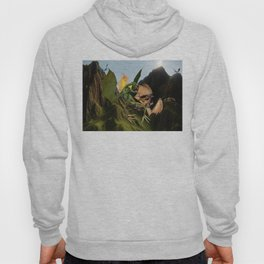 Battle for Dragon Mountain Hoody