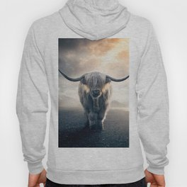 highland cattle scotland Hoody