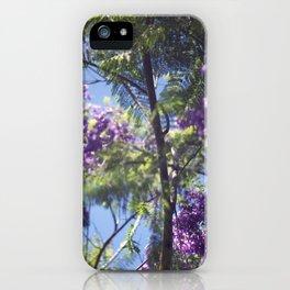 Jacaranda Tree II iPhone Case