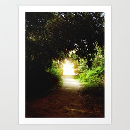 Come to the Light Art Print