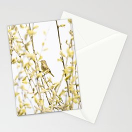 Happy Chiffchaff Welcomes Spring | Bird Photogrphy Stationery Cards