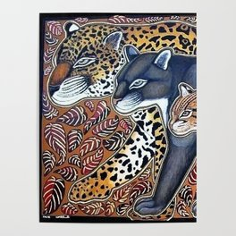 Big cats of Costa Rica Poster