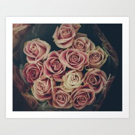 Vintage pink and white roses Art Print