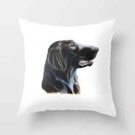 Flatcoated retriever 2 Throw Pillow