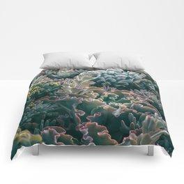 Mornings In The Succulent Garden #1 Comforters