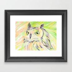 Bright Owl Framed Art Print
