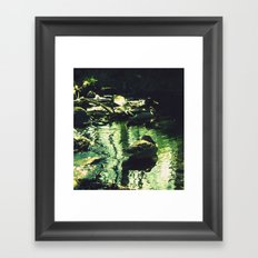Duck Soulmates Framed Art Print