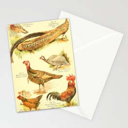 William Playne Pycraft - A Book of Birds (1908) - Plate 10: Game-birds; Pheasants, Turkey and Others Stationery Cards