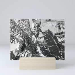 Banana Tree // Maui, Hawaii Mini Art Print