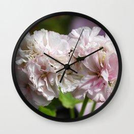 Pelargonium Dreams - Steffens Lina Wall Clock