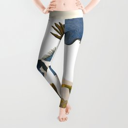 Belted Kingfisher Bird Leggings
