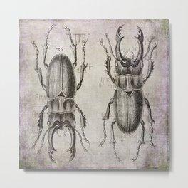 Grunge Style Stag Beetle Metal Print