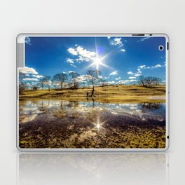 Mack Park Laptop & iPad Skin