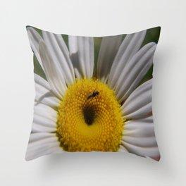 daisy macro Throw Pillow