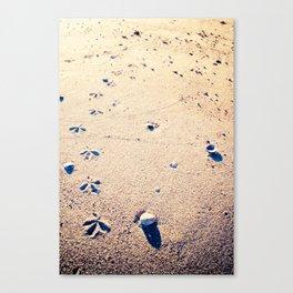 Quietly Canvas Print