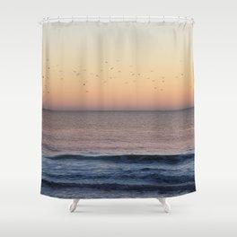 Flock of Seagulls Shower Curtain