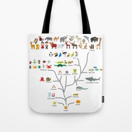 Evolution scale from unicellular organism to mammals. Evolution in biology, scheme evolution Tote Bag