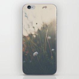 buckwheat ... iPhone Skin