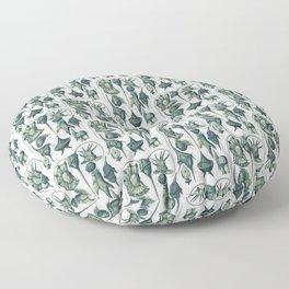 Ernst Haeckel Peridinea Plankton Algae Teal Floor Pillow